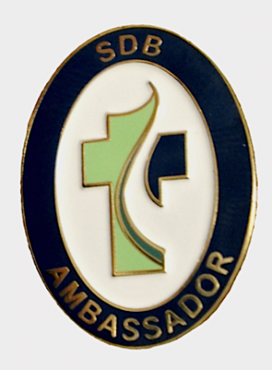 SDB ambassador pin web_0